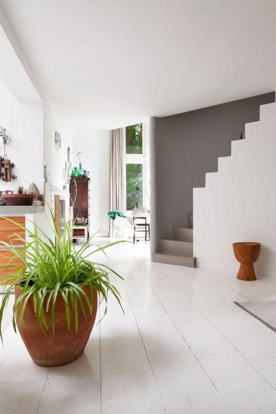 elegante treppe hellgrau design pflanze weißes ambiente