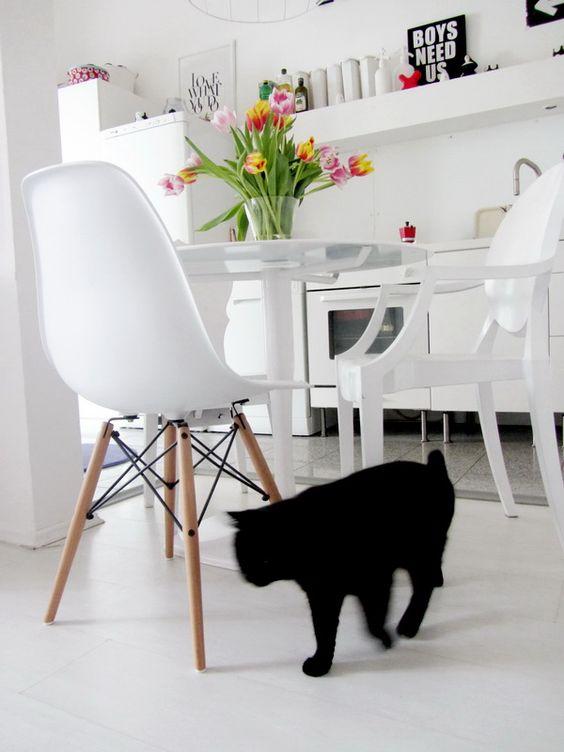 Black cat M & A dekor