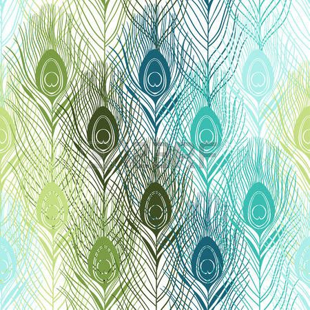 transparent pattern with peacock feathers.  Vector hand drawn background.  photo