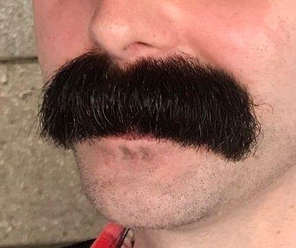 Walrus Moustache Moustache Walrus Mustache Beard No Mustache