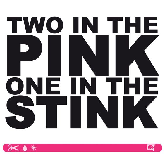 Sticker Two In The Pink One In The Stink Schwarz
