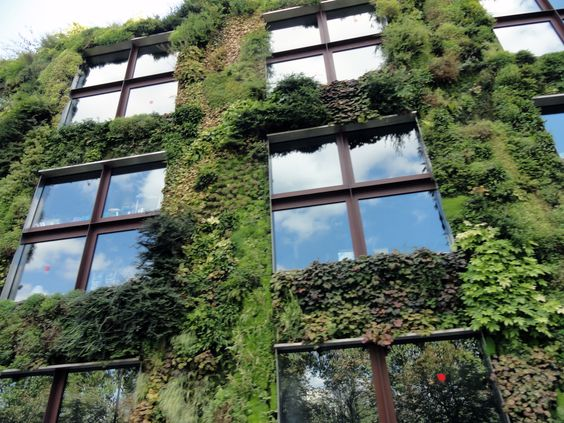 Paris, building with vines