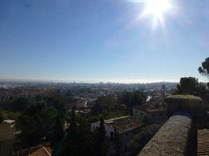 Palma view