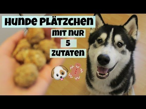 Hunde Platzchen Mit 5 Zutaten I Leberwurst Kase Ballchen I Easy