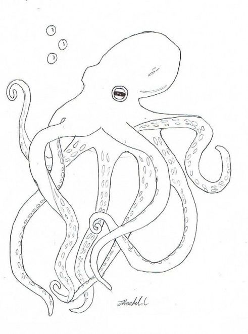 Free Printable Octopus Coloring Pages For Kids Kidswoodcrafts Octopus Coloring Page Coloring Pages Hand Embroidery