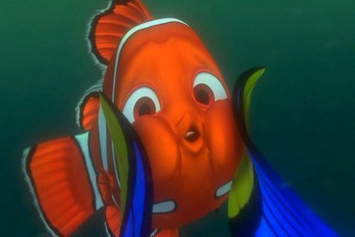 P. Sherman 42 Wallaby Way, Sidney.