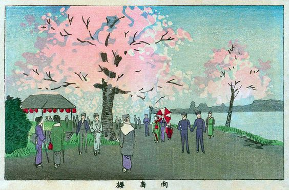 Tokyo Attractions - Cherry Blossom Viewing