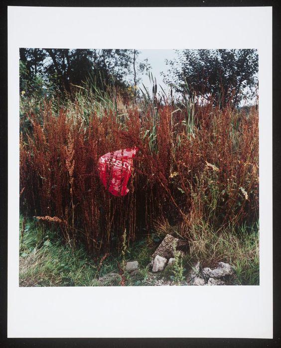 Keith Arnatt 'Miss Grace's Lane', 1986–7 © Keith Arnatt Estate: