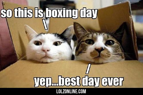 Boxing Day… #lol #haha #funny
