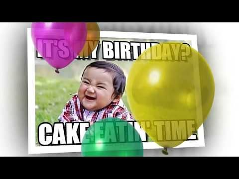 Happy Birthday Memes With Funny Cats Dogs And Animals Happy Birthday Meme Happy Birthday Video Happy Birthday Fun