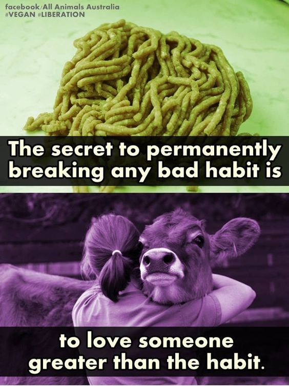 Actually I think this can go for any bad habit. Take smoking for example. Stupid right? Just think of all the people it affects as well and think of someone who you love a lot that's way more important and fucking smoking and shit lol