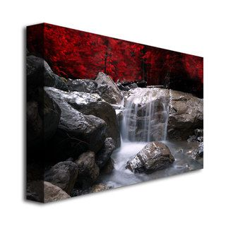 Philippe Sainte-Laudy 'Red Vison' Canvas Art | Overstock.com Shopping - The Best Deals on Canvas