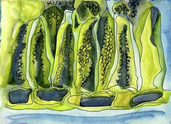 Plantstuff - Watercolour & Ink