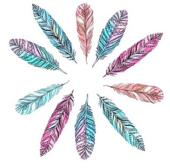 Watercolor doodle feathers
