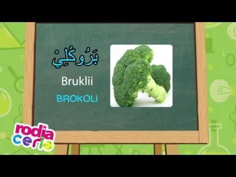 Bahasa Arab Untuk Anak Sayur Sayuran 4 Youtube Belajar Bahasa Sayuran