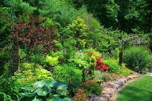 Greater Philadelphia Gardens