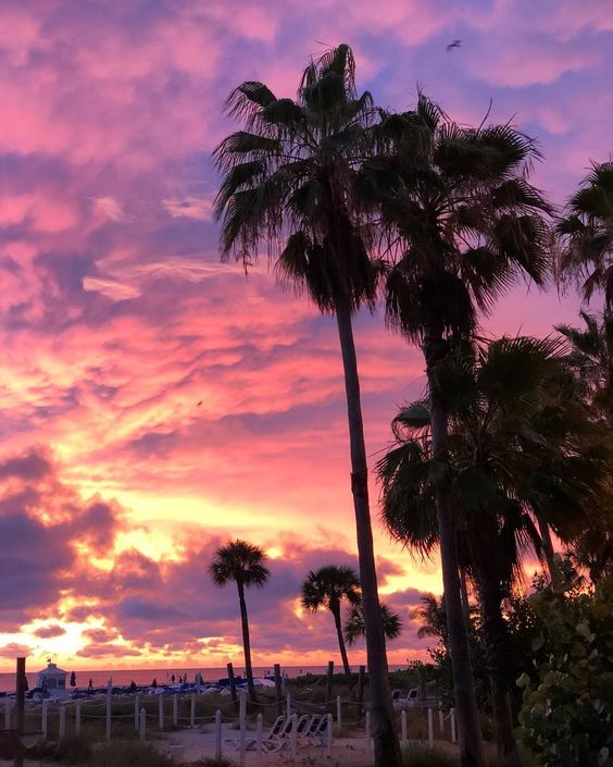 Cotton candy skies at TradeWinds Island Resorts in St. Pete Florida