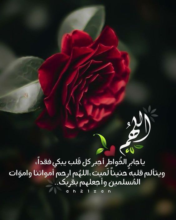 خلفيات أدعية يوم عرفة 2019 1440 افضل ادعيه عن يوم عرفه فوتوجرافر Islamic Quotes Islamic Quotes Quran Quran Verses