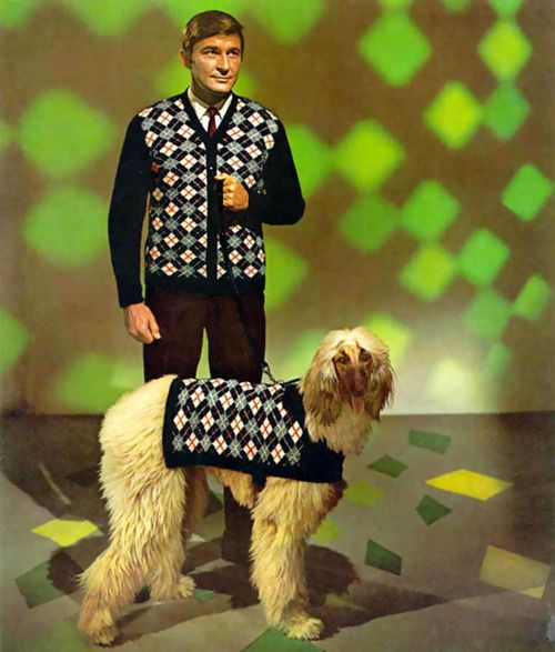 Mans Cardigan And Afghan Hound With Matching Coat
