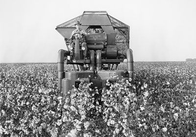 old+cotton+pickers | No. 8 cotton picker in the San Joaquin Valley,