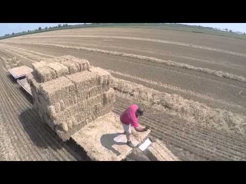 wheat harvest and straw baling 2015
