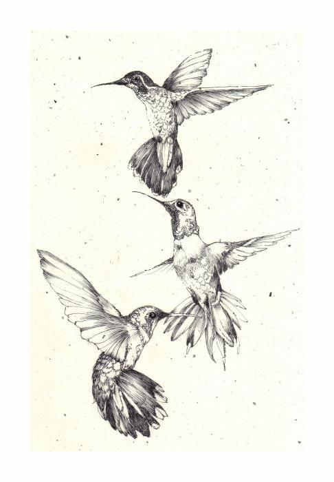 3 hummingbird tattoo - with watercolor splattered on them.
