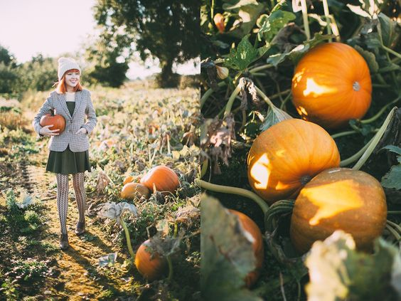 Hello October! We spent the first day of October tromping through a farmer friend's pumpkin patch. Last year the weather was so bad a lot ...