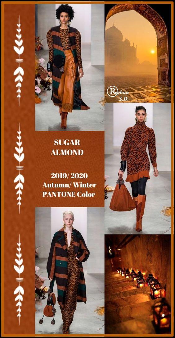 '' Sugar Almond '' Pantone - Autumn/ Winter 2019/ 2020 Color- by Reyhan S.D.