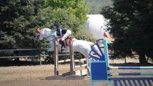 Rob gives this rider equitation tips and tips for her distance.