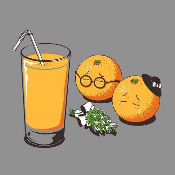 daily lives of foods and drinks - Google Search