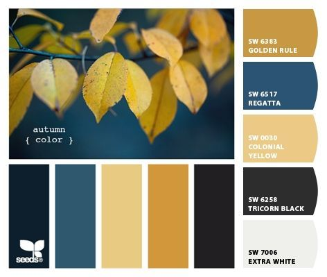 Color Scheme Black 2 Tone Grey Instead Of White Black Color Palette Color Palette Yellow Blue Color Schemes
