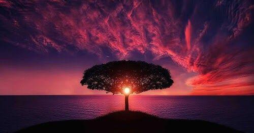 لدينا مجموعة من أجمل الصور للتنزيل المجاني لقد ساهم مستخدمونا بآلاف الصور في مدونتنا هنا سوف تجد بعض Beautiful Sunset Sunset Inspirational Quotes Motivation