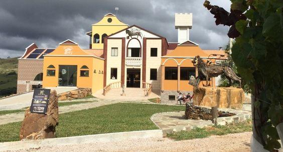 Vinícola Leone di Venezia está localizada nas belas paisagens do Morro Agudo, na cidade de São Joaquim/SC.