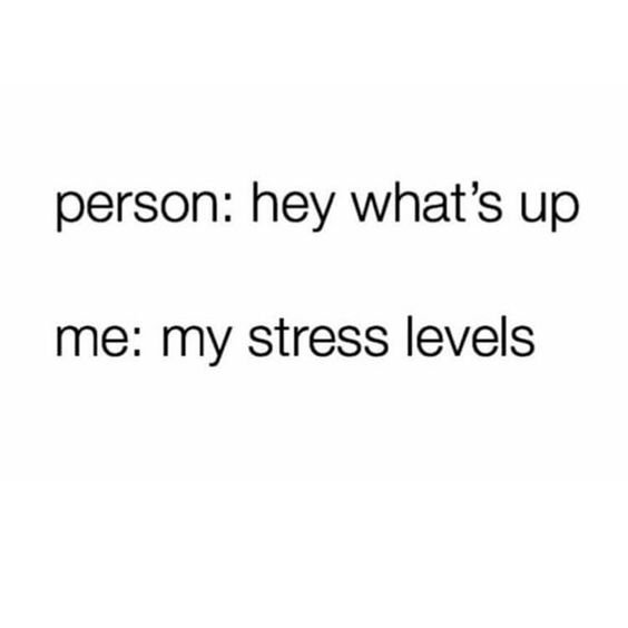Never not stressed.