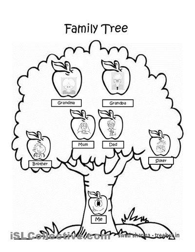 Family trees, Family tree worksheet and Coloring on Pinterest