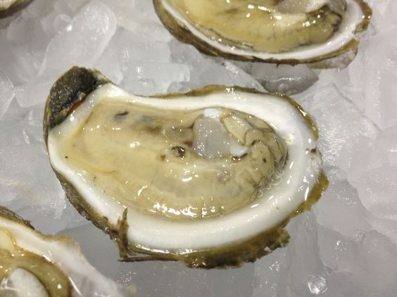 Wild Caught York River Oysters