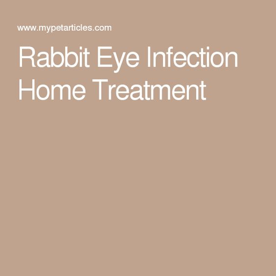 Rabbit Eye Infection Home Treatment