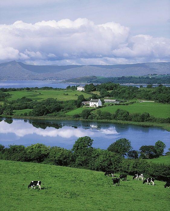 Bantry Bay, Co Cork, Ireland Canvas Print / Canvas Art By