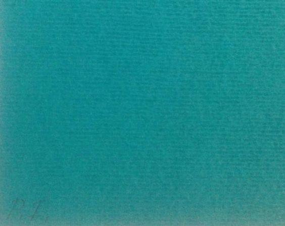 MACAPARANA - Serigrafia colorida assinada pelo artista, acid. P.I. Tamanho 10 x 50cm. Ano: 2005. Sem moldura.