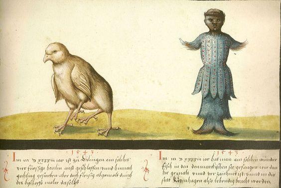 The Book of Miracles  Augsburger Wunderzeichenbuch — Folio 145- Wundersames Huhn und wundersamer Fisch 1543