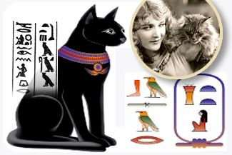 The Origin of the Domestic Cat — Cats have been a source of fascination for mankind throughout history. From the ancient days through contemporary times, cats are one of the world's most . . . http://blog.21stcenturypet.com/2012/11/the-origin-of-the-domestic-cat/#