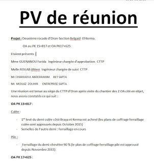 Exemple De Pv Reunion Word Doc Autocad Words Dissertation Economique Redigee Pdf