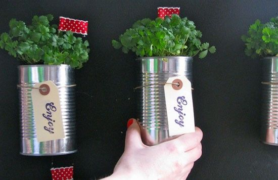 Indoor Herb Garden. Awesome use for tin cans!