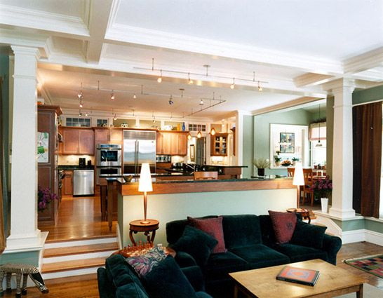 Like the open kitchen and step down into the living room for Great room addition off kitchen