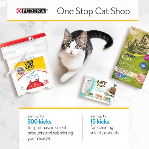 Shop Walmart Use Shopkick Buy Cat Products And Earn Free Gift