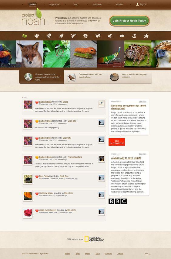 Project Noah #websitedesign #webdesign #layout