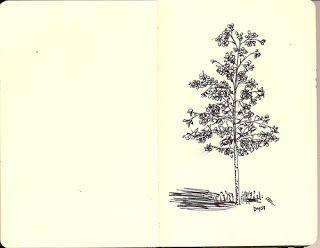 Treasuring Grace: Making Whole: Line Drawing: Tree
