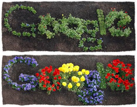 Google Doodle Flowers Growing #google