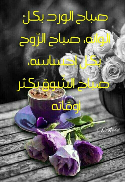 Pin By Mohammad Ayyash On صباح الخير Morning Greeting Good Morning Greetings Romantic Love Quotes