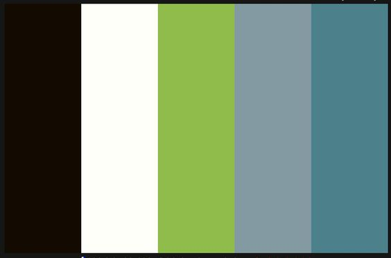 Color scheme black and white curtains gray walls teal for Accent colors for green walls